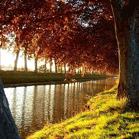 Le canal à l'automne